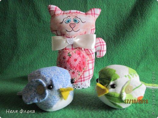 Печальный кот и птички фото 1
