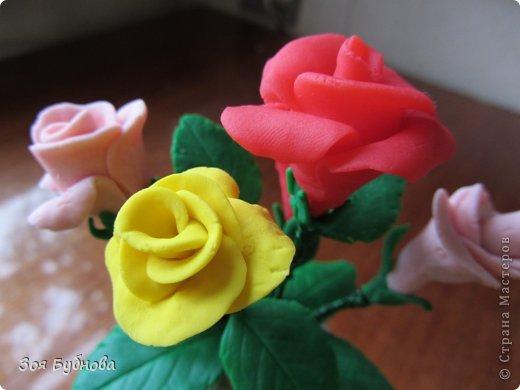 Добрый день, жители прекрасной страны. Это мои первые розочки.  Мне кажется, что они больше напоминают розы с торта, чем розы, которые выставляют здесь мастера. Но, надеюсь, они поднимут вам настроение своим смешным видом...... фото 3
