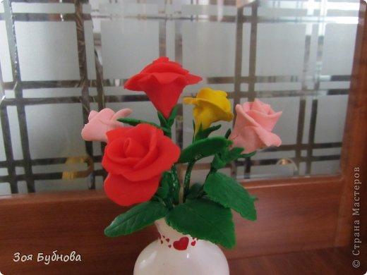 Добрый день, жители прекрасной страны. Это мои первые розочки.  Мне кажется, что они больше напоминают розы с торта, чем розы, которые выставляют здесь мастера. Но, надеюсь, они поднимут вам настроение своим смешным видом...... фото 4