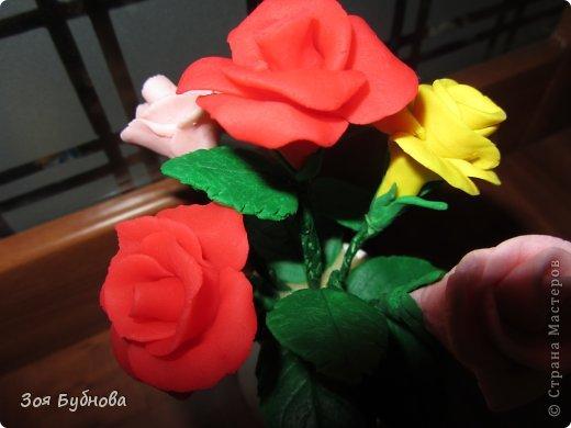 Добрый день, жители прекрасной страны. Это мои первые розочки.  Мне кажется, что они больше напоминают розы с торта, чем розы, которые выставляют здесь мастера. Но, надеюсь, они поднимут вам настроение своим смешным видом...... фото 5