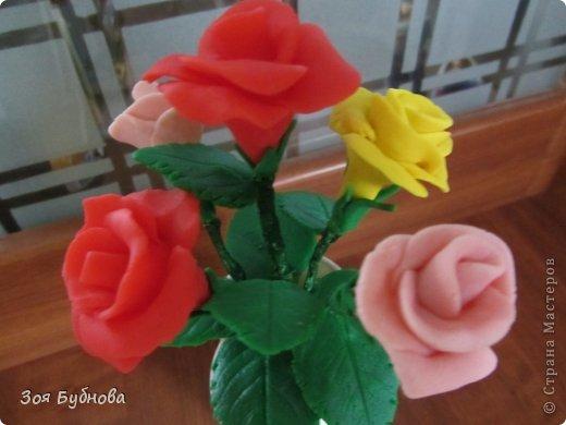 Добрый день, жители прекрасной страны. Это мои первые розочки.  Мне кажется, что они больше напоминают розы с торта, чем розы, которые выставляют здесь мастера. Но, надеюсь, они поднимут вам настроение своим смешным видом...... фото 1