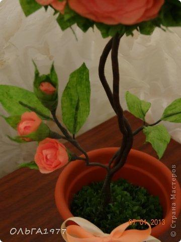 Вот такое розовое деревце получилось в подарок крёстной. фото 3