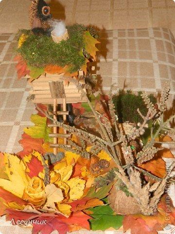 Работу делали за один день.Утром мох и листья еще в лесу лежали... фото 4