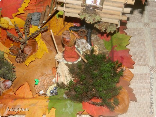 Работу делали за один день.Утром мох и листья еще в лесу лежали... фото 5