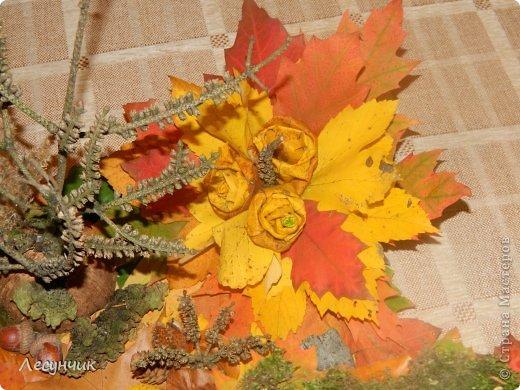 Работу делали за один день.Утром мох и листья еще в лесу лежали... фото 8