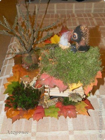 Работу делали за один день.Утром мох и листья еще в лесу лежали... фото 7