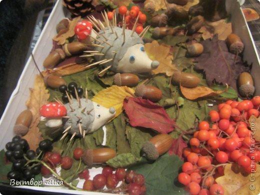 Вот такая у нас поделочка. Ёжики, грибы и пень из соленого теста. фото 2