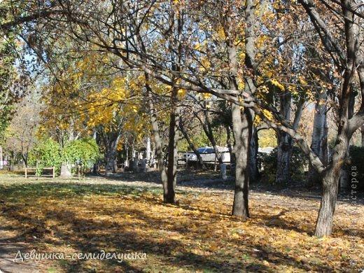 Я очень люблю золотую осень! Возможно потому, что в октябре у меня день рождения! А возможно потому, что природа наполнена такими яркими красками! Не знаю почему, но именно в это время года на душе мне становится очень хорошо, спокойно...  фото 3