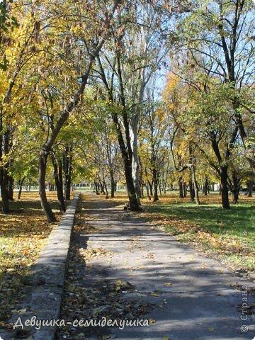Я очень люблю золотую осень! Возможно потому, что в октябре у меня день рождения! А возможно потому, что природа наполнена такими яркими красками! Не знаю почему, но именно в это время года на душе мне становится очень хорошо, спокойно...  фото 8