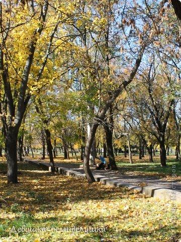 Я очень люблю золотую осень! Возможно потому, что в октябре у меня день рождения! А возможно потому, что природа наполнена такими яркими красками! Не знаю почему, но именно в это время года на душе мне становится очень хорошо, спокойно...  фото 9