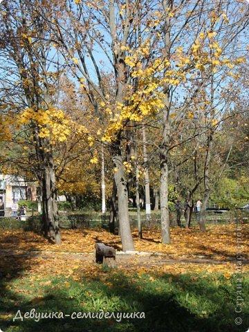 Я очень люблю золотую осень! Возможно потому, что в октябре у меня день рождения! А возможно потому, что природа наполнена такими яркими красками! Не знаю почему, но именно в это время года на душе мне становится очень хорошо, спокойно...  фото 10