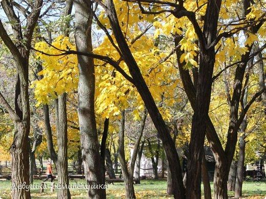 Я очень люблю золотую осень! Возможно потому, что в октябре у меня день рождения! А возможно потому, что природа наполнена такими яркими красками! Не знаю почему, но именно в это время года на душе мне становится очень хорошо, спокойно...  фото 4