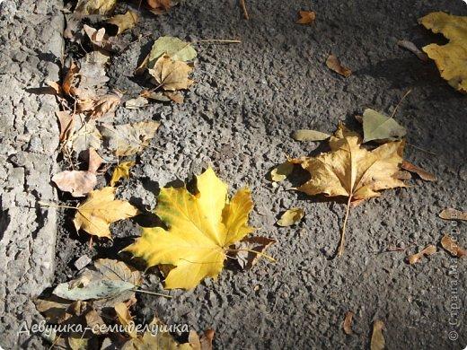 Я очень люблю золотую осень! Возможно потому, что в октябре у меня день рождения! А возможно потому, что природа наполнена такими яркими красками! Не знаю почему, но именно в это время года на душе мне становится очень хорошо, спокойно...  фото 1