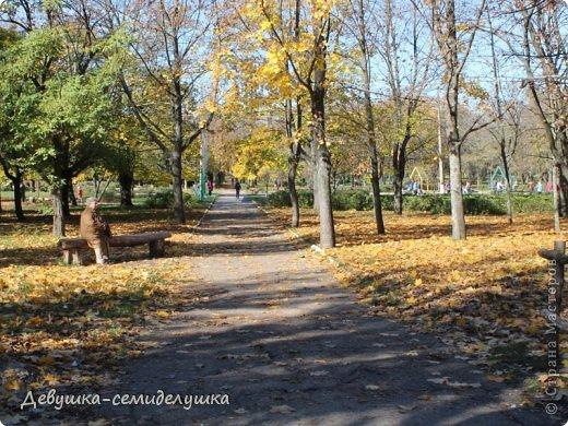 Я очень люблю золотую осень! Возможно потому, что в октябре у меня день рождения! А возможно потому, что природа наполнена такими яркими красками! Не знаю почему, но именно в это время года на душе мне становится очень хорошо, спокойно...  фото 6