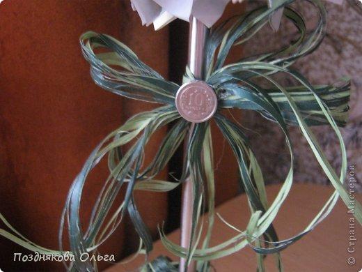 Доброго времени суток жителям СМ! Хочу показать свое дерево из сувенирных денежных купюр... фото 3