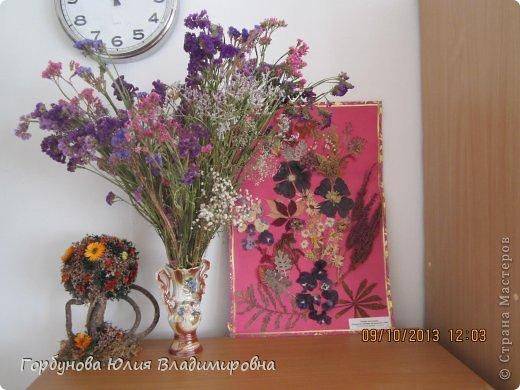 Цветочные приветы от уральского лета фото 2
