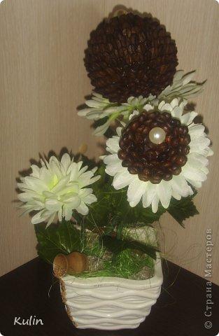 вот такие кофейные цветочки сложились... фото 1