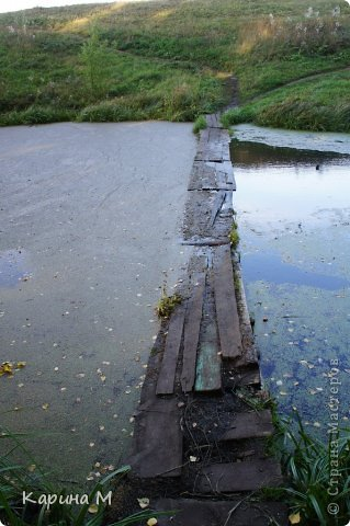 Приглашаю прогуляться по природе Тюменской области. река Исеть. фото сделано 20 октября фото 5