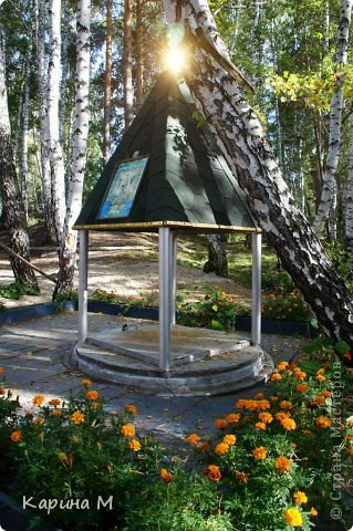 Приглашаю прогуляться по природе Тюменской области. река Исеть. фото сделано 20 октября фото 6