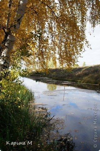Приглашаю прогуляться по природе Тюменской области. река Исеть. фото сделано 20 октября фото 8