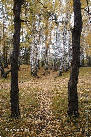 Приглашаю прогуляться по природе Тюменской области. река Исеть. фото сделано 20 октября фото 12