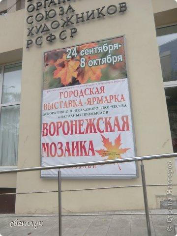 Ездила в Воронеж и подсказали , что проходит . выставка ярмарка . Вот я туда и сходила. фото 1