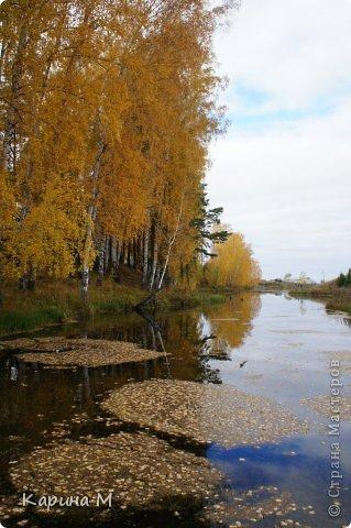 Приглашаю прогуляться по природе Тюменской области. река Исеть. фото сделано 20 октября фото 14