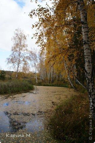 Приглашаю прогуляться по природе Тюменской области. река Исеть. фото сделано 20 октября фото 15