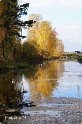 Приглашаю прогуляться по природе Тюменской области. река Исеть. фото сделано 20 октября фото 17
