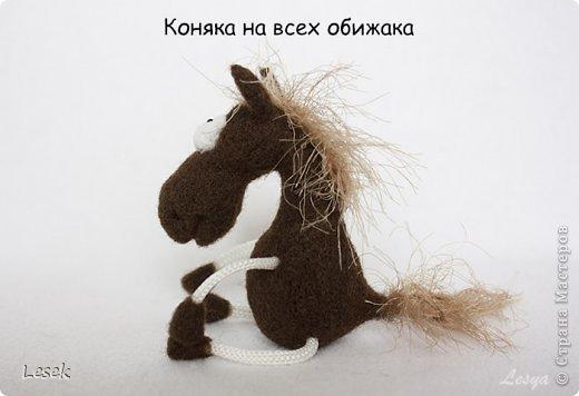 Только мы с конём по полю идём...))) фото 3