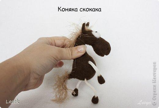 Только мы с конём по полю идём...))) фото 6