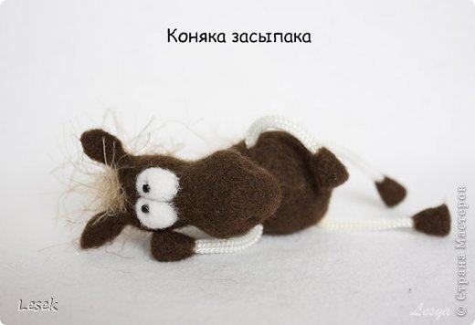 Только мы с конём по полю идём...))) фото 7