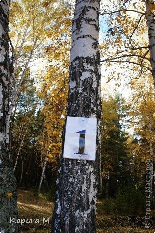 Приглашаю прогуляться по природе Тюменской области. река Исеть. фото сделано 20 октября фото 22