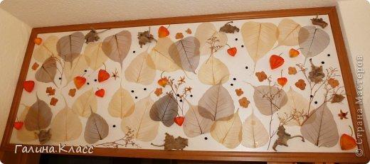 Коллаж размером 105 х 45 см, выполнен из скелетированных листьев, покрашенных марганцовкой, сухих листьев и цветов гортензии, а также шелковых плодов физалиса. фото 1