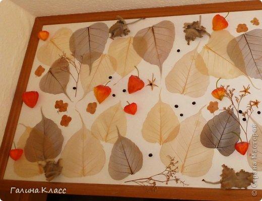 Коллаж размером 105 х 45 см, выполнен из скелетированных листьев, покрашенных марганцовкой, сухих листьев и цветов гортензии, а также шелковых плодов физалиса. фото 2