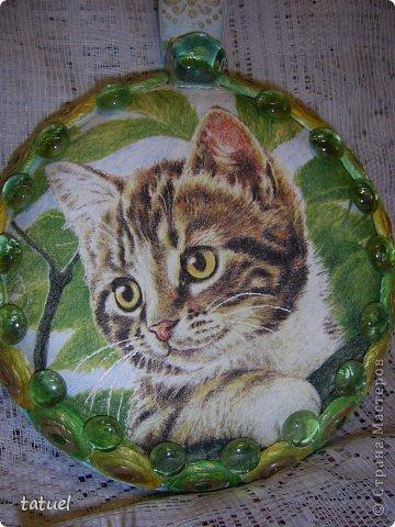 А знаете ли вы, что можно  подарить любимому коту на день рождения?  Скорее всего только лакомство. И в придачу еще сковородочку, сделанную с любовью к любимому Тришке. фото 2