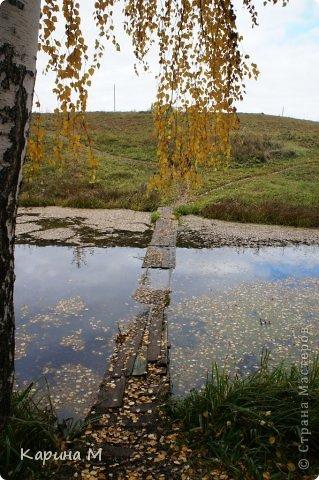 Приглашаю прогуляться по природе Тюменской области. река Исеть. фото сделано 20 октября фото 31