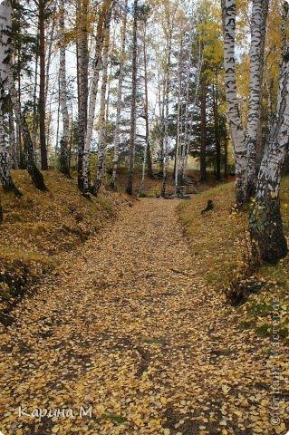 Приглашаю прогуляться по природе Тюменской области. река Исеть. фото сделано 20 октября фото 34
