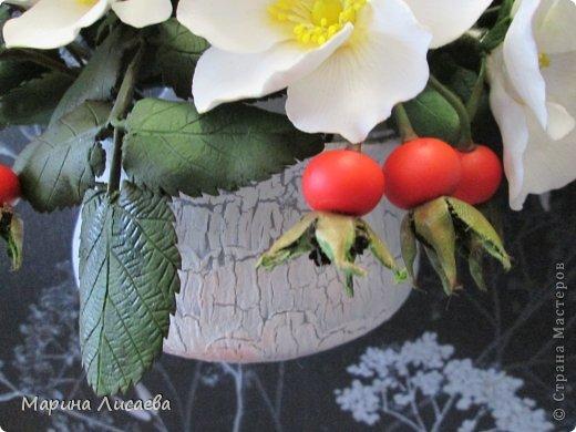 Здравствуйте, уважаемые жители СМ! Со вчерашнего дня на моей кухне поселился белый шиповник.  фото 6