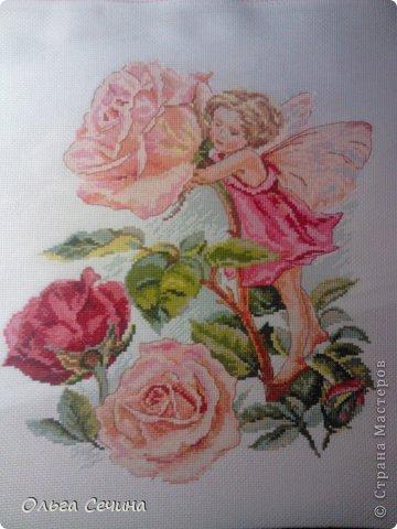 крестом Фея розового сада