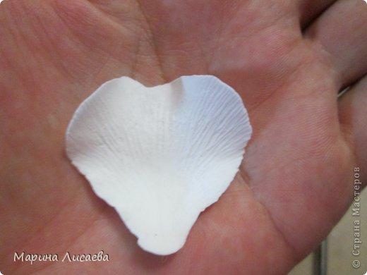 Мастер-класс Лепка Белый шиповник МК Глина Фарфор холодный фото 10