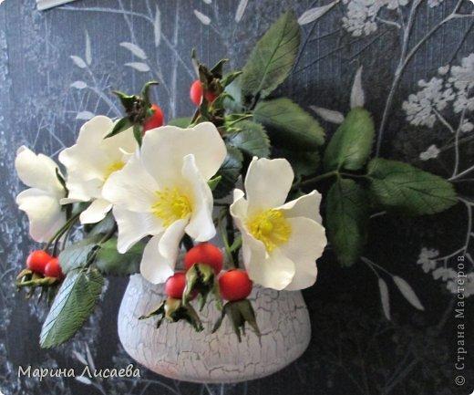 Мастер-класс Лепка Белый шиповник МК Глина Фарфор холодный фото 1
