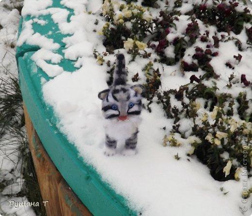 Войлочный котенок. фото 2