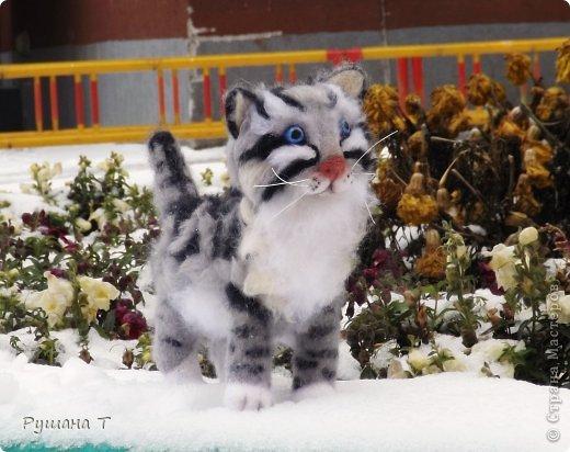 Войлочный котенок. фото 3