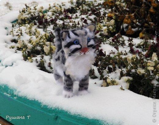Войлочный котенок. фото 1