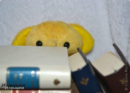 """Вот она...моя первая малышка - подружка Мишки Тедди. Она такая солнечная. Такая милашка.  Пошита из """"Вискозы - антик"""" с коротким ворсом, производство США.. Этот материал специально  создан для мини мишек. Глазки стеклянные.  Наполнтель - гранулят и синтепух. Юбочка - 100% хлопок. Голова - на шплинтак. Крутится. Ножки и руски - нитяное крепление. Подвижны.  Малышка останется у меня, никому не отдам))) Она как мамочка - любит книжки, вот смотрите: фото 3"""