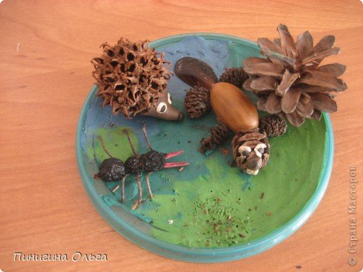 Поделка изделие Лепка Поделки из пластилина и природного материала Материал природный