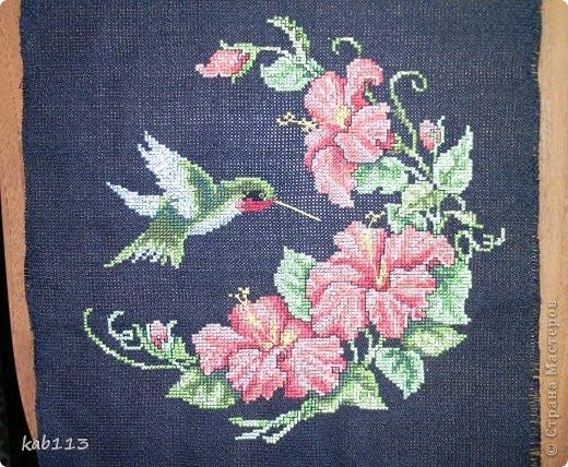 Вышивка крестом колибри с