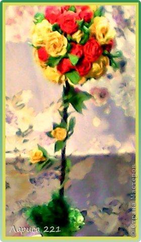Крона.Но цвет к сожалению не такой на самом деле.Жёлтые цветы более яркие. фото 6