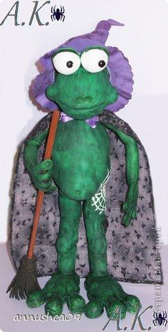 Знакомьтесь Ведьмочка-Эльза, самая загадочная лягушка среди своих подруг фото 1